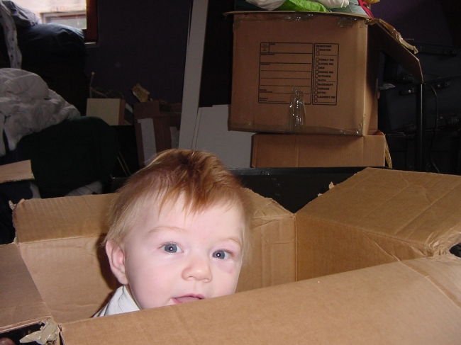 Benjamin in the Moving Boxes