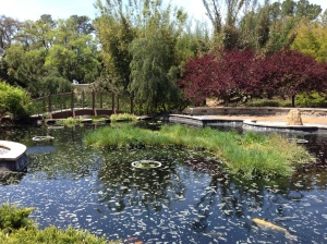 Zen Garden-Jacksonville Zoo