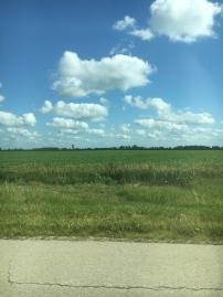 Illinois..so calm, so pretty, so zen.