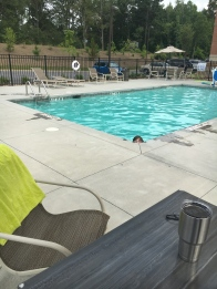 As we got further south, the heat intensified. Luckily, pools were more plentiful!